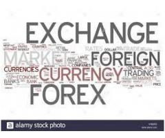 Forex, Foreign Exchanges, Currency Changer, Money Changer, Money Exchange